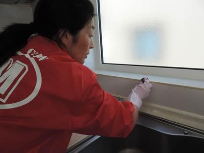 キッチン-作業手順追加 ガキッチン棚、調理台、壁面、照明、窓は表面の汚れを丁寧にふき取り、油汚れを除去します。